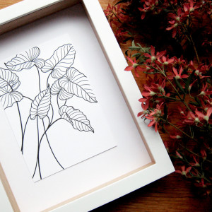Collected-Patterns-Caladium-Letterpress-Print-Framed